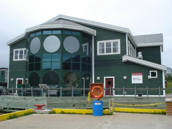 Norris Point, Kanada: Bonne Bay Marine Station