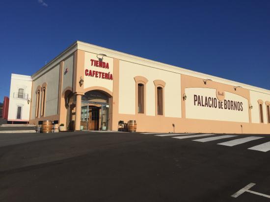 imagen Bodega Palacio De Bornos en Rueda