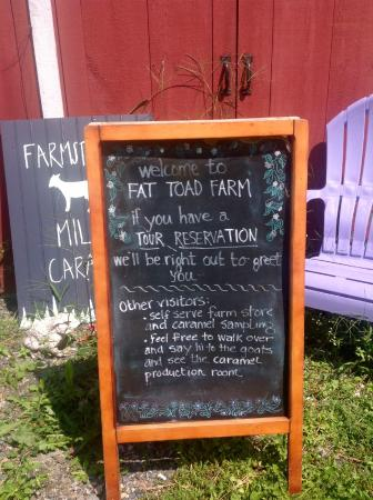 Fat Toad Farm: sign told us what to do.