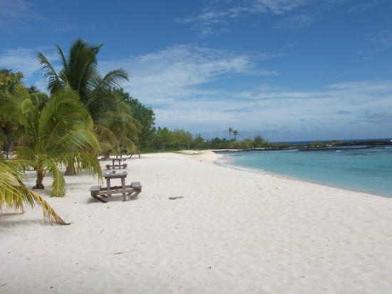 Falealupo Beach Fales