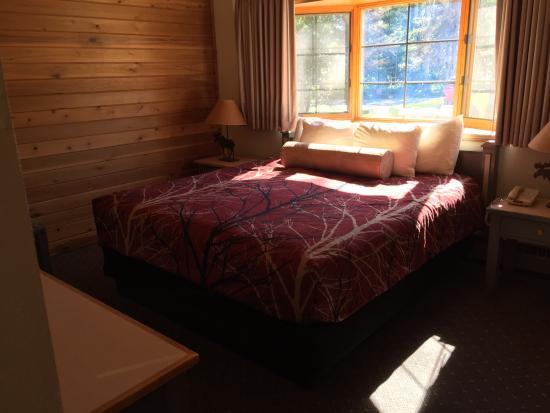 Kenai Princess Wilderness Lodge: photo3.jpg