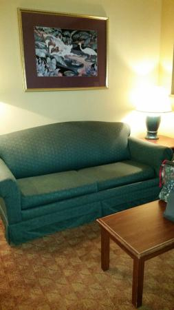Comfort Suites Airport: couch