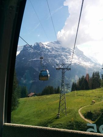 Grindelwald, Suíça: First