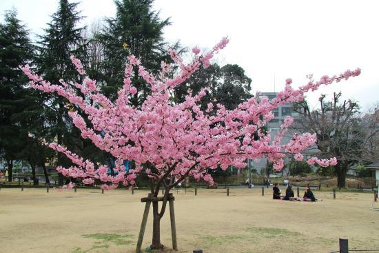 Sugekari Park