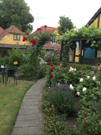 Maribo Bed and Breakfast: The back garden