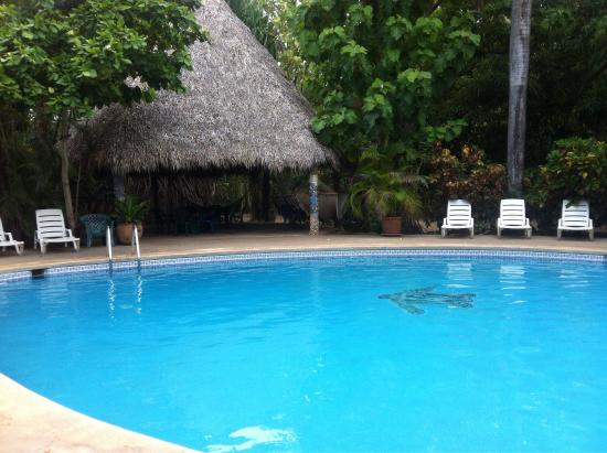 Hotel Las Tortugas: photo3.jpg
