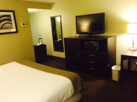 Holiday Inn Express Hotel & Suites Pittsburgh Airport: Another view