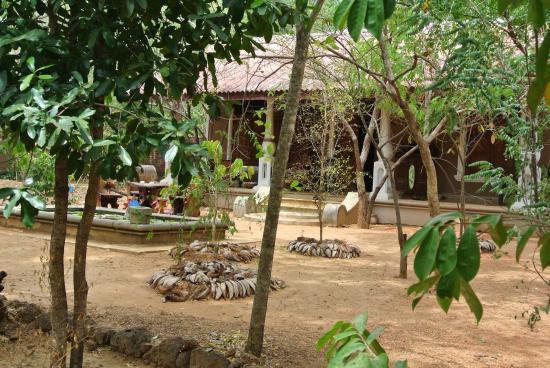 Athreya Hotel & Spa : cabines de massage