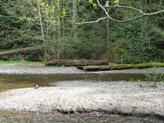 Nanaimo, Canada: River rocks near the lower dam