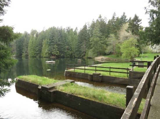 Nanaimo, Canada: Swimming hole in the lower Dam