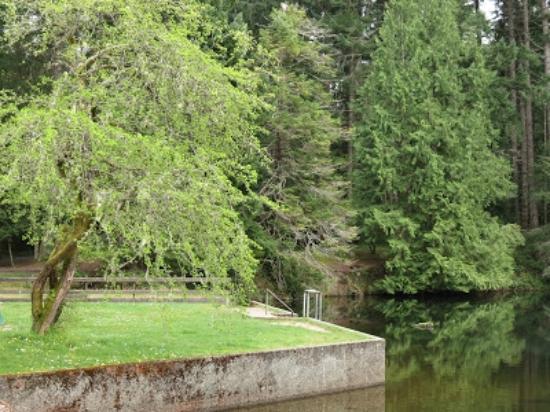 Нанаймо, Канада: Lower dam