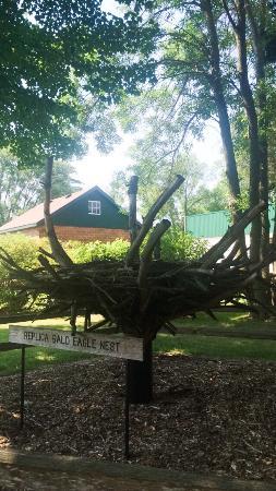 Oxbow Park and Zollman Zoo: photo2.jpg