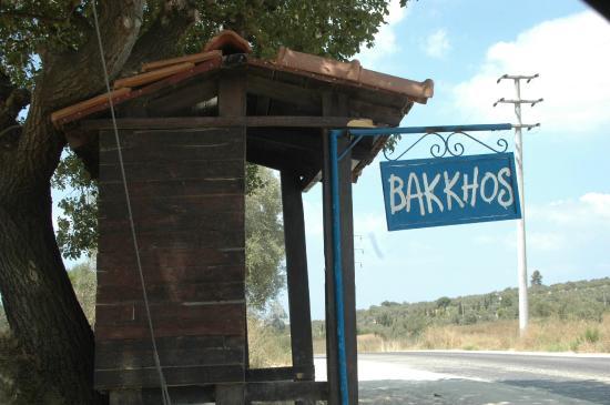Bakkhos Guesthouse: bakkhos