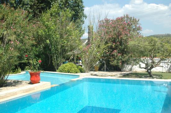 Bakkhos Guesthouse: Havuzu