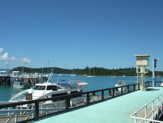 Palm Bay Resort Long Island Reviews