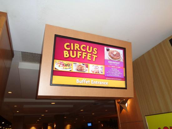 Circus circus coupons buffet