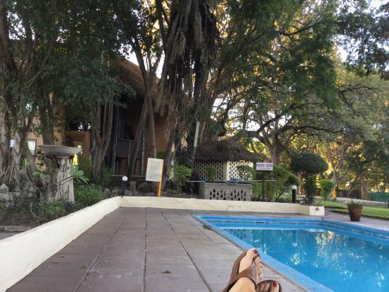 Cresta Riley's Hotel : Pool