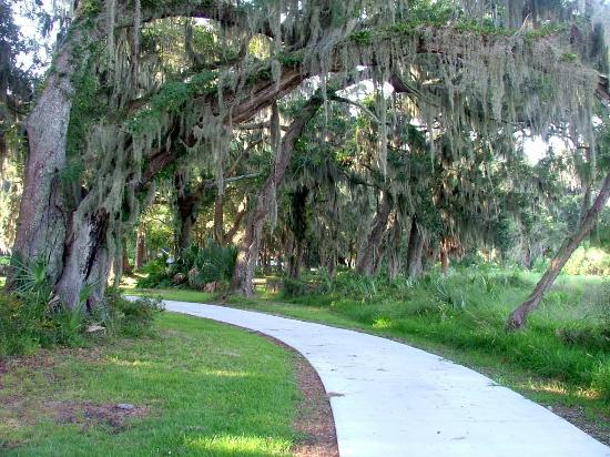 Spanish Moss Line Bike Trail Picture Of Holiday Inn Resort