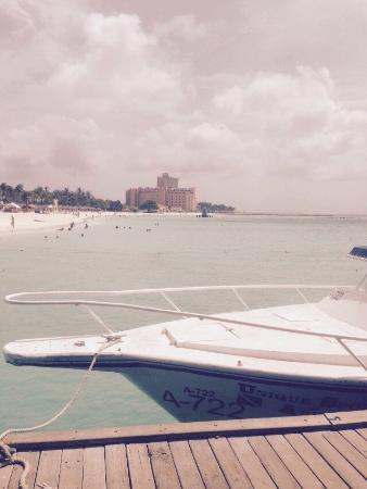 Aruba Harmony Apartments Suites & Hostel: Mooie appartementencomplex, goede prijs/kwaliteits verhouding, mooie rustige ligging. Welkom is
