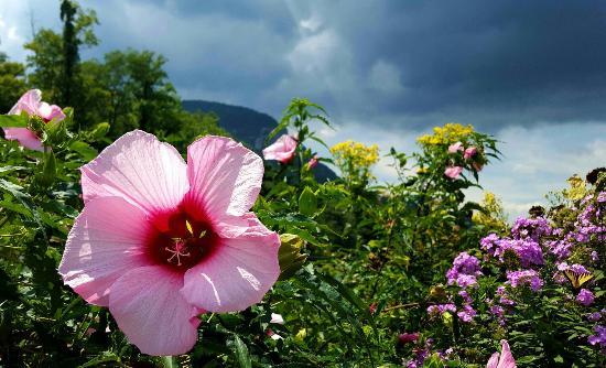 Lake Lure, Carolina del Norte: Heaven on earth
