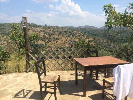 Hotel Petropoulakis God's Land : Piscina tavoli per la colazione