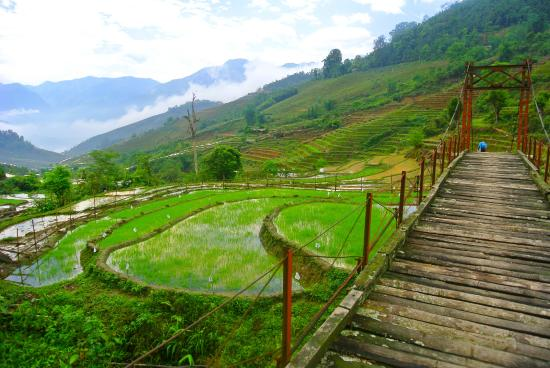 Topas Travel - Sapa Mountain Hike Day Tour