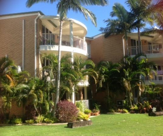 Macquarie Lodge: Too much shrubbery/palms around balcony.