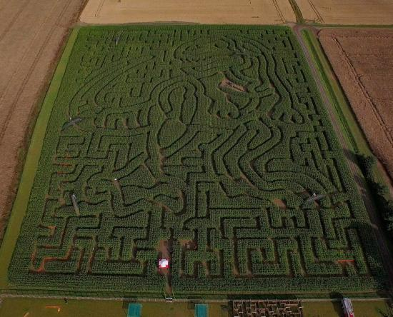 ‪‪Milton‬, UK: 2015 Aerial of the T Rex Maze‬