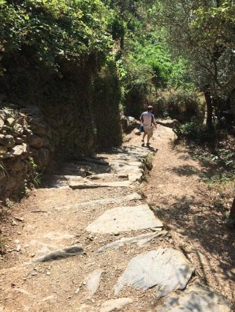 Sentiero Monterosso - Vernazza