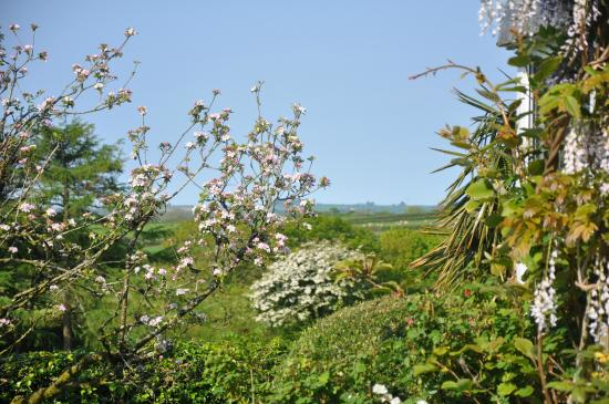 Lanreath, UK: Garden and view beyond
