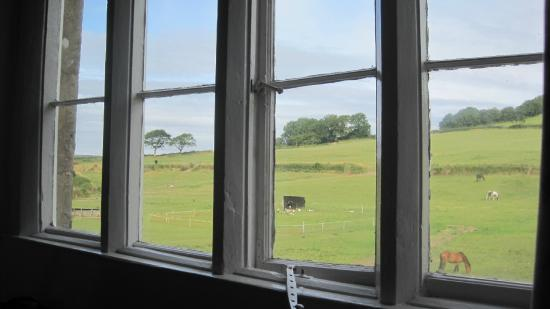 Musbury, UK: view from window of family room