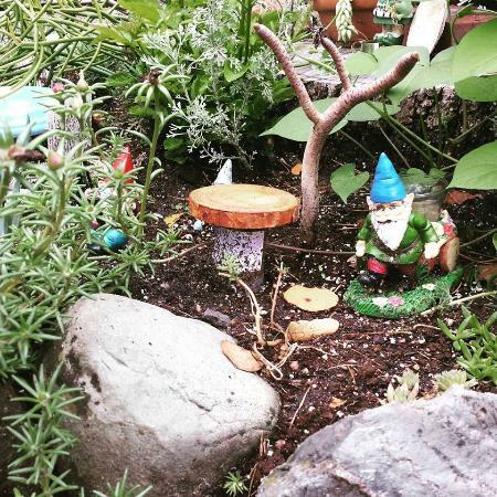 Munsinger Gardens : Tiny gnome garden