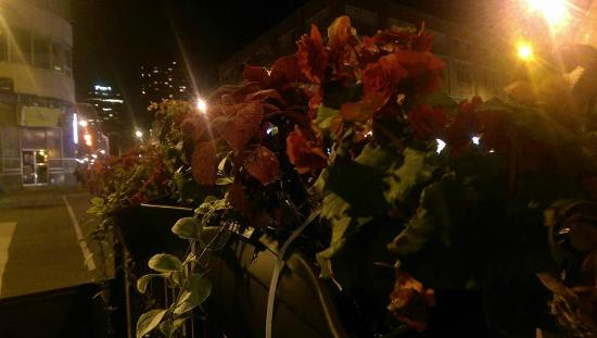 Bistro Cafe & Cucina: The flowers