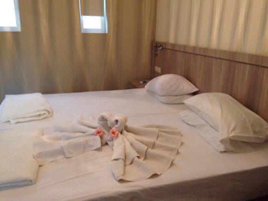 Lamon Hotel: Monolocale e bagno. Arredo moderno e perfetto