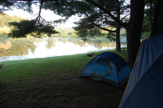 Cooperstown Beaver Valley Cabins & Campsites : Tent site #8