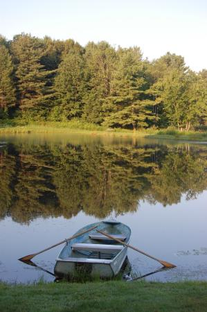 Cooperstown Beaver Valley Cabins & Campsites : The pond