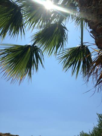 Hotel Irida Plakias: By the pool - bliss