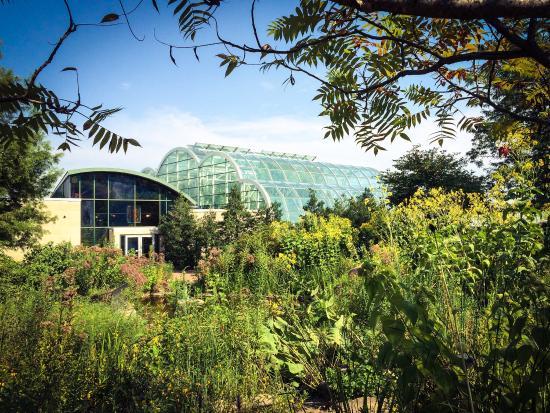 Sachs Butterfly House : photo0.jpg