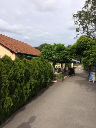 Kleingartenverein Kuhlager Seele Picture Of Kleingartenverein