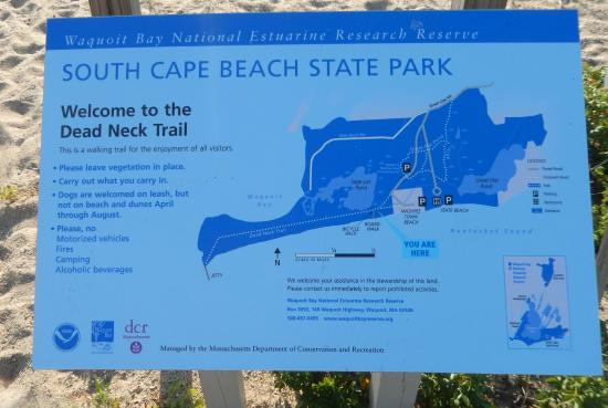 South Cape Beach State Park Trails At