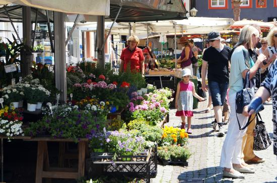 Offenburger Wochenmarkt