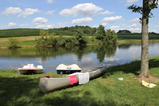 Adamsville, OH: Pond