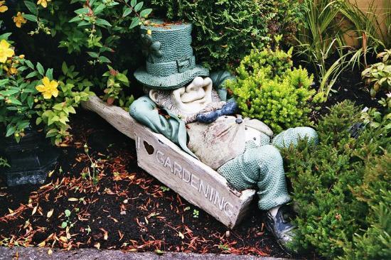 Orchard House: Le gardien du jardin....