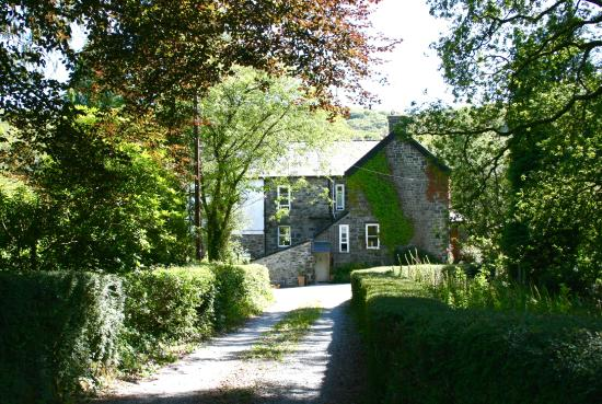Afon Rhaiadr Bed and Breakfast: Country House from the drive