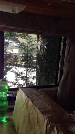 Big Timber Lake Family Camping Resort: photo1.jpg