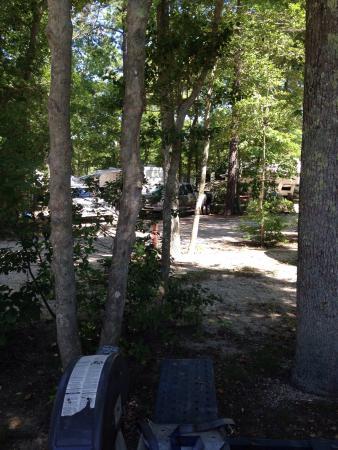 Big Timber Lake Family Camping Resort: photo2.jpg