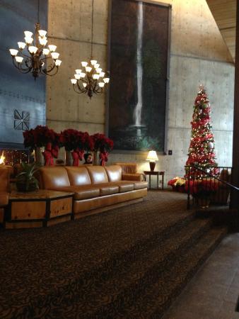 Iron Blosam Lodge: lobby