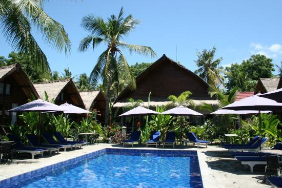 Turtle Beach Hotel Piscine