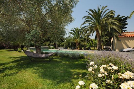 Les Jardins de Corneilla : Le jardin