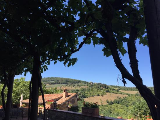 Agriturismo Podere Felceto: View from the porch of the villa